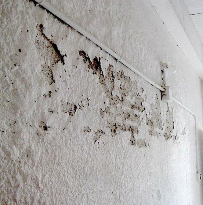 Impermeabilización en Cartagena